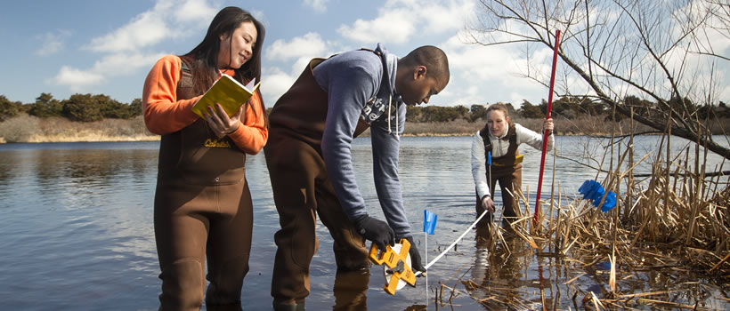 Three students stand in knee deep wetlands in Nantucket taking measurements with various devices.