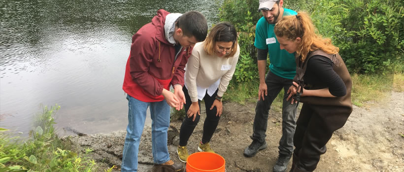 Four students examine a specimen in a bucket by a stream
